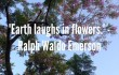"Inspirational Quote of the Day: ""Earth Laughs in flowers."" - Ralph Waldo Emerson"