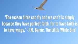 Inspirational Quote - J.M. Barrie, The Little White Bird