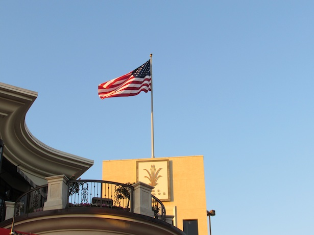 The Grove and The American Flag