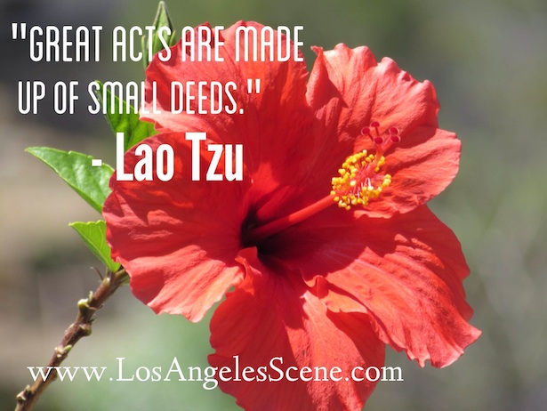 Inspirational Quote of the Day by Lao Tzu on Los Angeles Scene