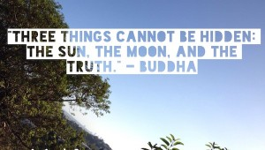 wise quotes by Buddha on Los Angeles Scene