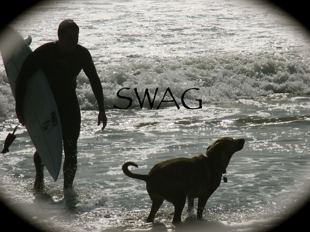 Dating in Los Angeles Man dog surfing
