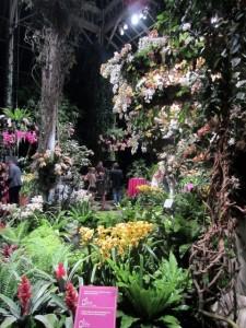 Best Flowers in New York City