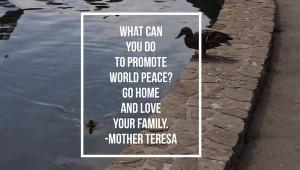 Inspirational Quote Mother Teresa