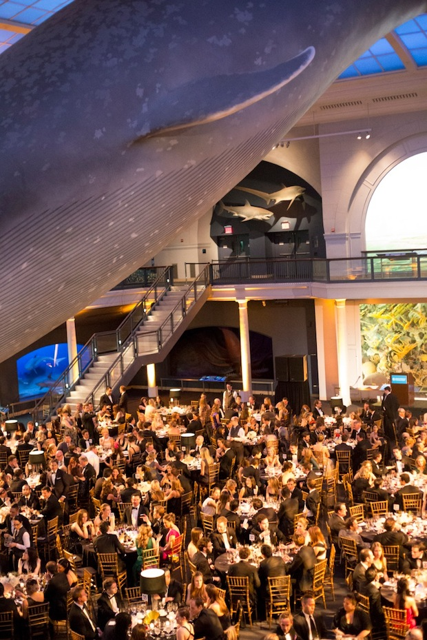American Museum of Natural History Dance Event New York 2015 Formal Dinner